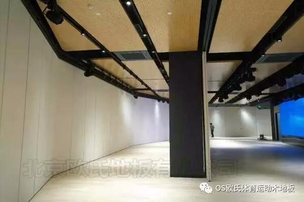 韩国大使馆文化院多功能厅体育地板成功案例-图3
