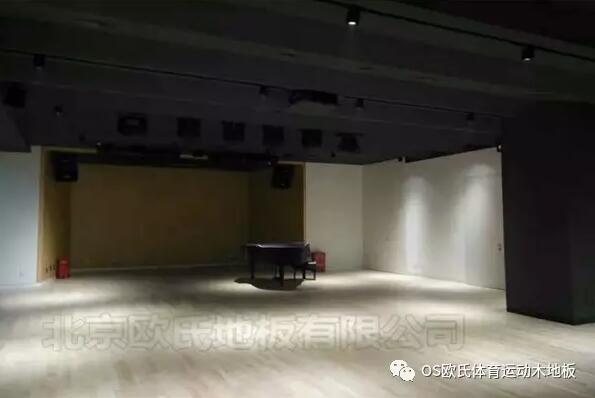 韩国大使馆文化院多功能厅体育地板成功案例-图4