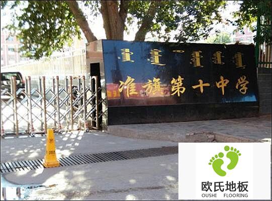 内蒙古准格尔旗第十中学体育馆运动BOB棋牌app下载案例