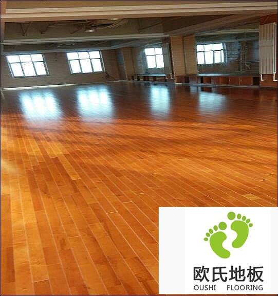 舞蹈BOB棋牌app下载工程案例-新疆百铭教育