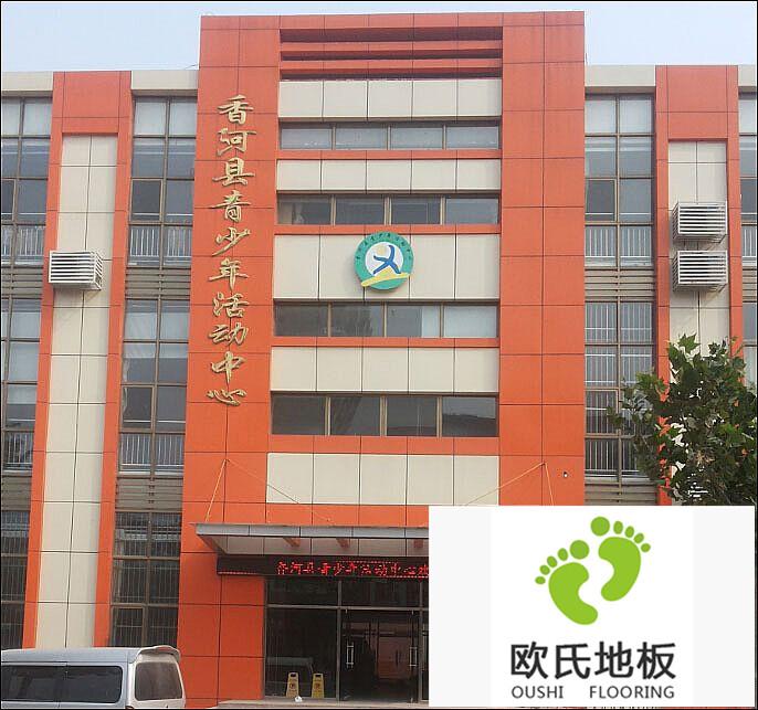 体育BOB棋牌app下载安装工程案例-河北香河县青少年活动中心