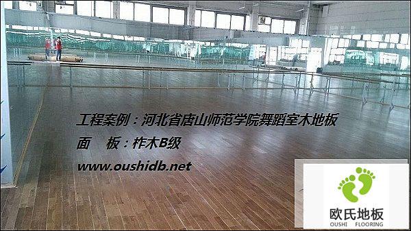 河北省唐山师范学院舞蹈室BOB棋牌app下载铺设工程
