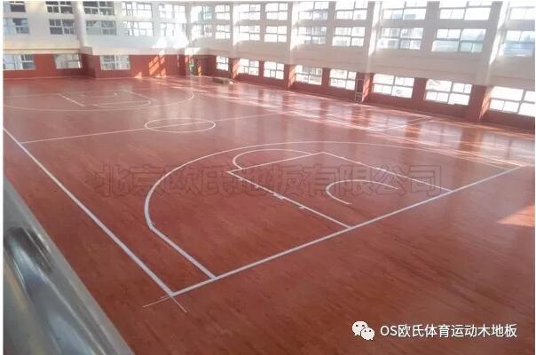 江苏常州溧阳市南渡镇体育馆运动BOB棋牌app下载案例