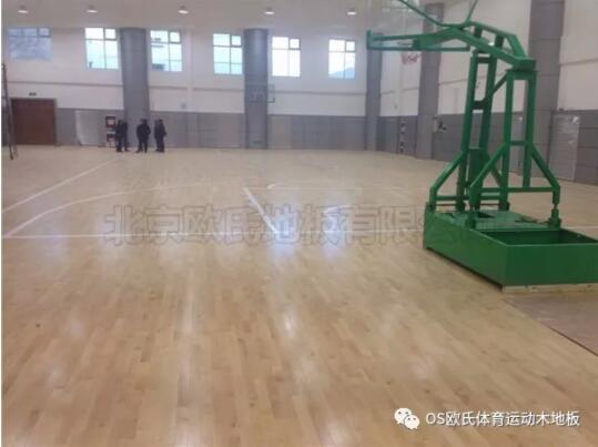 中国人民银行玉树藏族自治州中心支行篮球馆BOB棋牌app下载案例