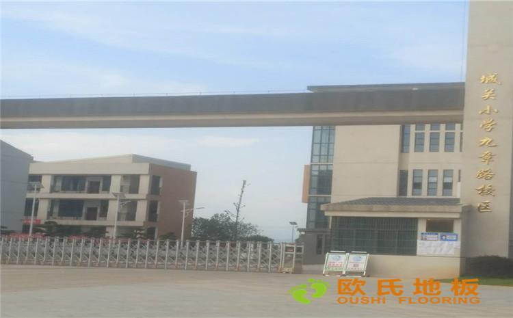 赣州市宁都县城关小学体育馆木地板项目