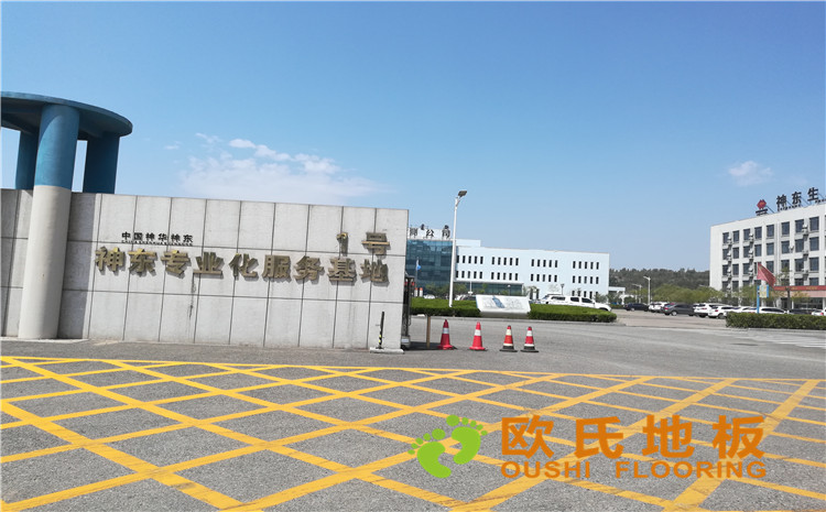 内蒙古神东专业化服务基地体育馆BOB棋牌app下载案例